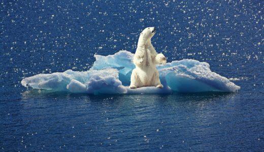 村木風海はどうやって地球温暖化を止める?質問箱への質問がすごい!