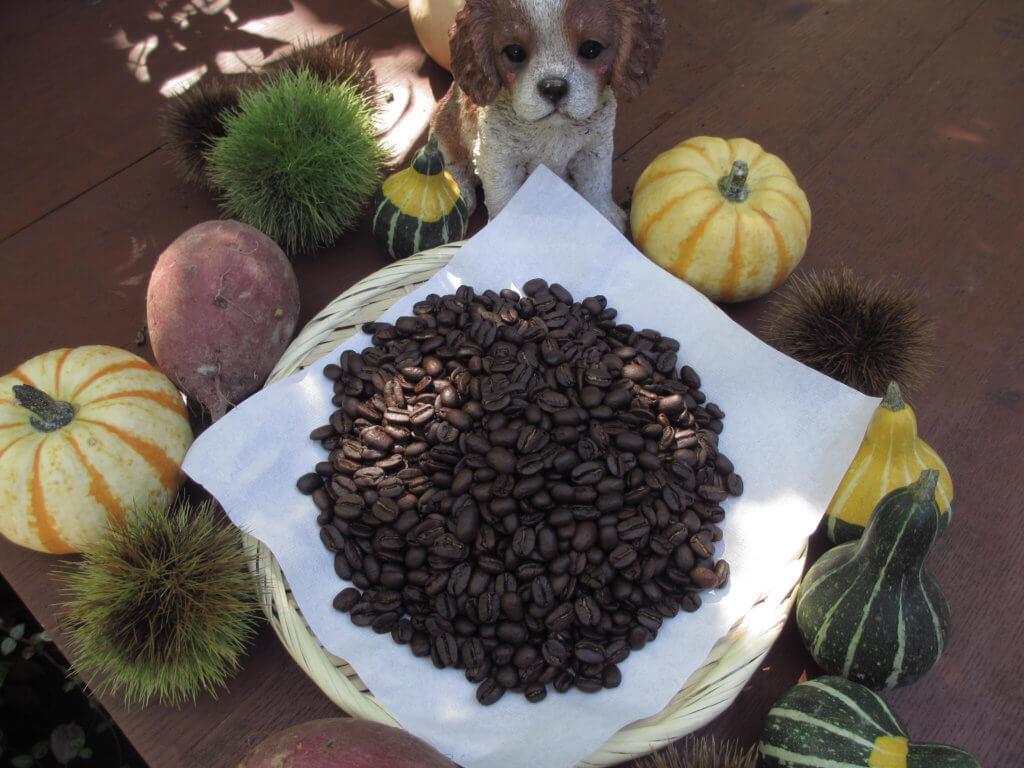 モカモアコーヒーのコーヒー豆